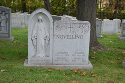 Mary <I>Scanzani</I> Novellino