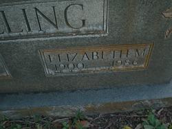 Elizabeth M Bolling