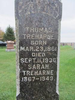 Thomas Albert Treharne