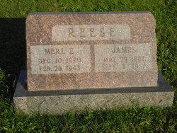 Merle Elizabeth <I>Smith</I> Reese