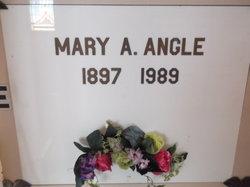 Mary Ann <I>Carroll</I> Angle