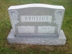 Homer E Brosius