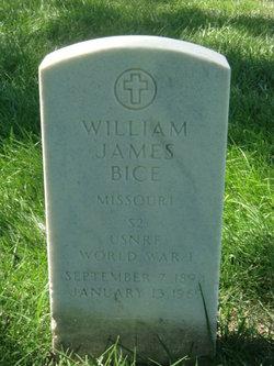 William James Bice