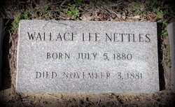 Wallace Lee Nettles