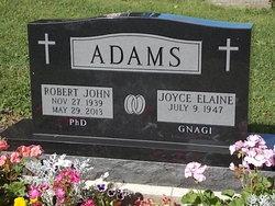 Robert John Adams