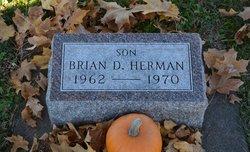 Brian D Herman