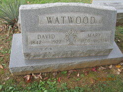 David Watwood