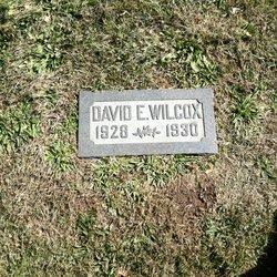 David Eldon Wilcox