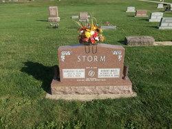 Robert Miles Storm