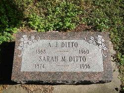 Sarah Myrtle <I>Hall</I> Ditto