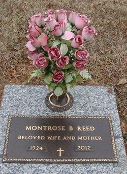 Montrose <I>Beam</I> Reed