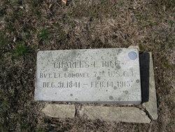 Charles L Rice