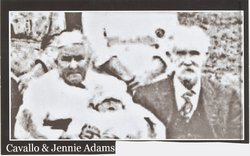 Jennie Elizabeth <I>Hammel</I> Adams