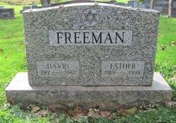 Esther <I>Ginsberg</I> Freeman