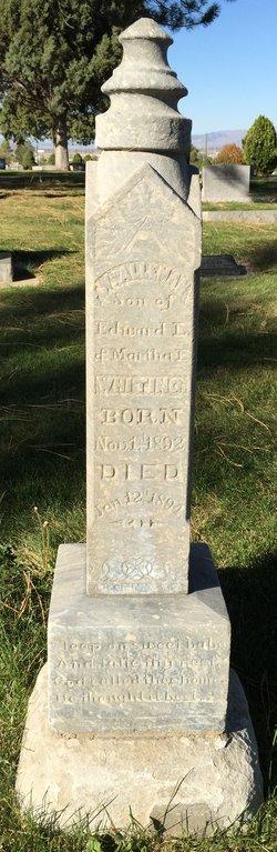 William Alleman Whiting