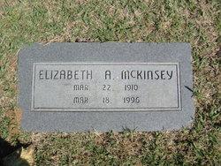 Elizabeth A McKinsey