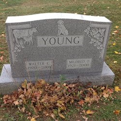 Walter C Young