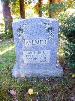 Patricia H Palmer