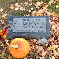 Cooper David Morgan