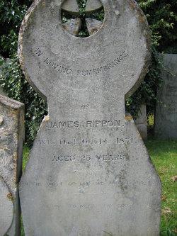 James Rippon