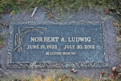 Norbert A Ludwig