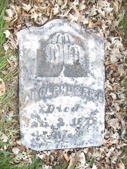 Adolphus Rice