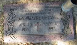 Dave Wayne Gressel