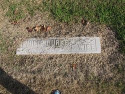 Annie <I>Doyle</I> Burke