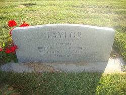 Lee J Taylor