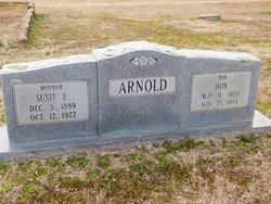 "Susie Evelyn ""Evie"" <I>Swinney</I> Arnold"