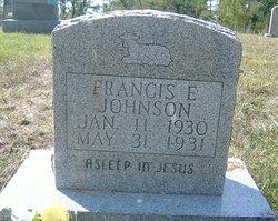 Frances E Johnson