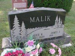 Alice K Malik