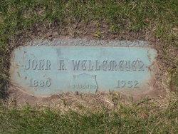 John Henry Wellemeyer