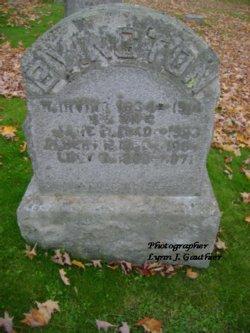 Albert Phelps Byington