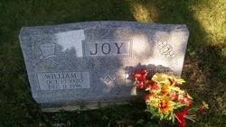 William I Joy