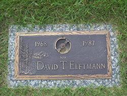 David T. Elftmann