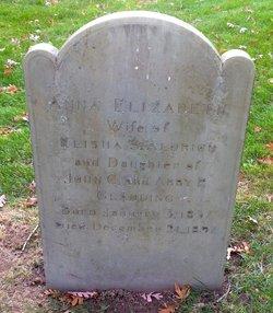 Anna Elizabeth <I>Gladding</I> Aldrich