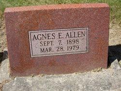 Agnes Ermina <I>Crowell</I> Allen