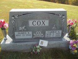 Carrie Ann <I>Spence</I> Cox
