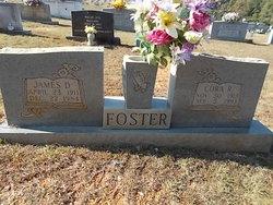 Cora Geneva <I>Railey</I> Foster