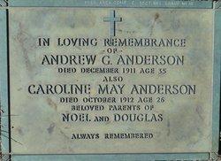 Andrew Gilbert Anderson