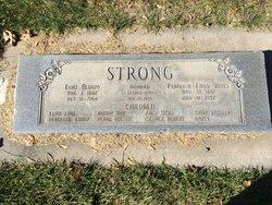 Elias Alonzo Strong