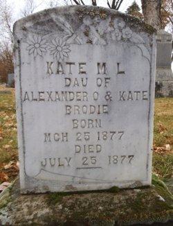 Kate M L Brodie