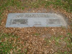 Harriett Haatvedt