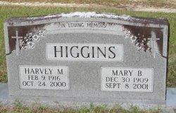 Mary Laverde <I>Bagwell</I> Higgins