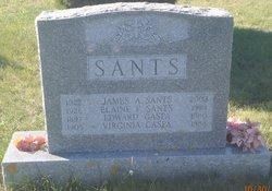 James Aloysius Sants