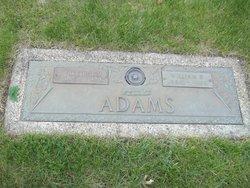 Allie M Adams
