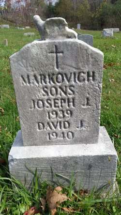 David J Markovich