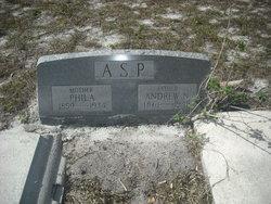 Andrew N Asp