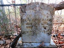 Julia Cathrine <I>George</I> Adams